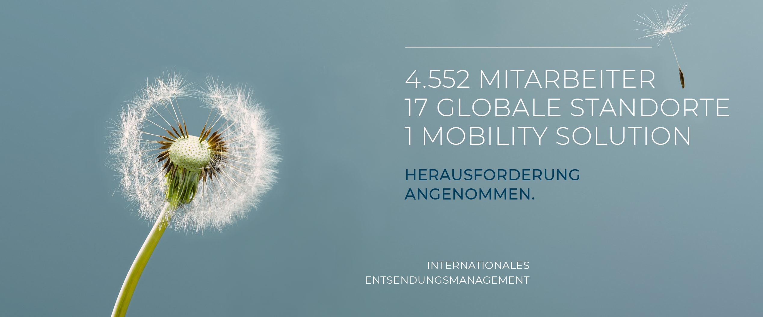 Entsendungsmanagement | Henk International
